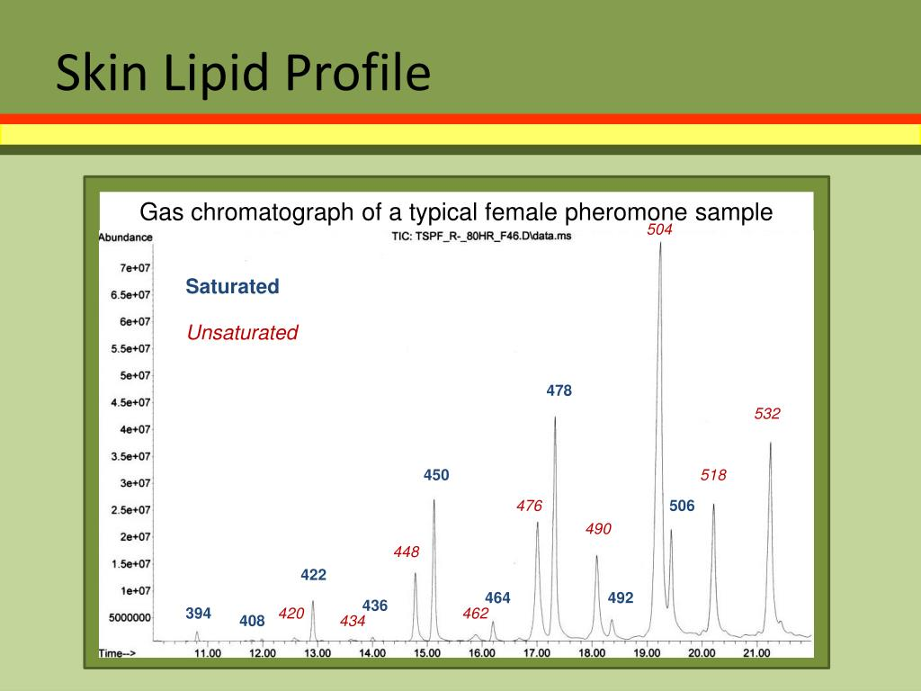 Skin Lipid Profile