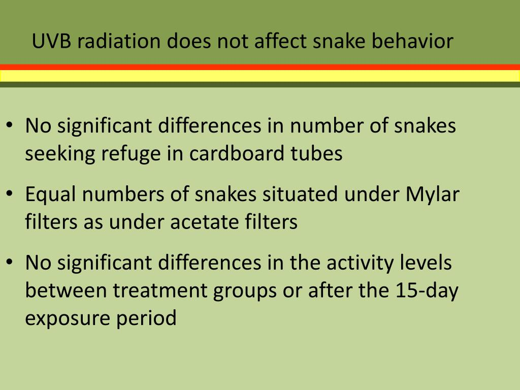 UVB radiation does not affect snake behavior