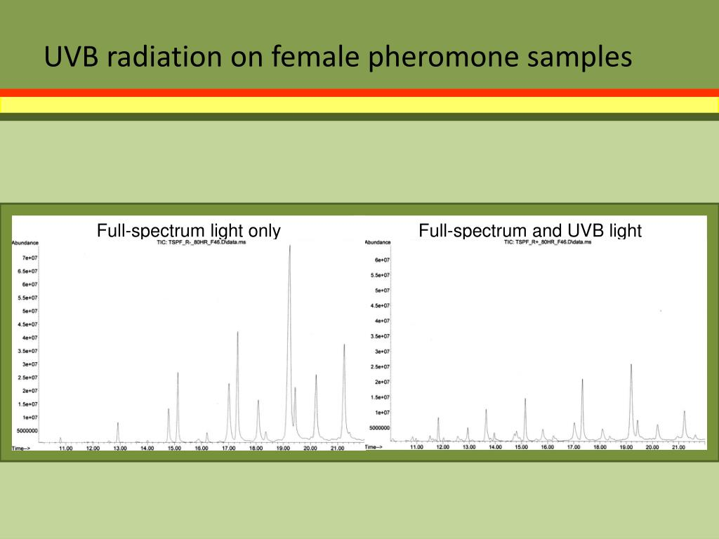 UVB radiation on female pheromone samples