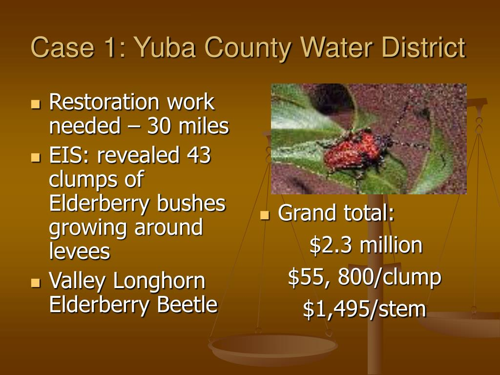Case 1: Yuba County Water District