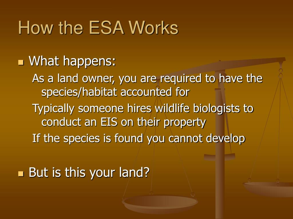 How the ESA Works