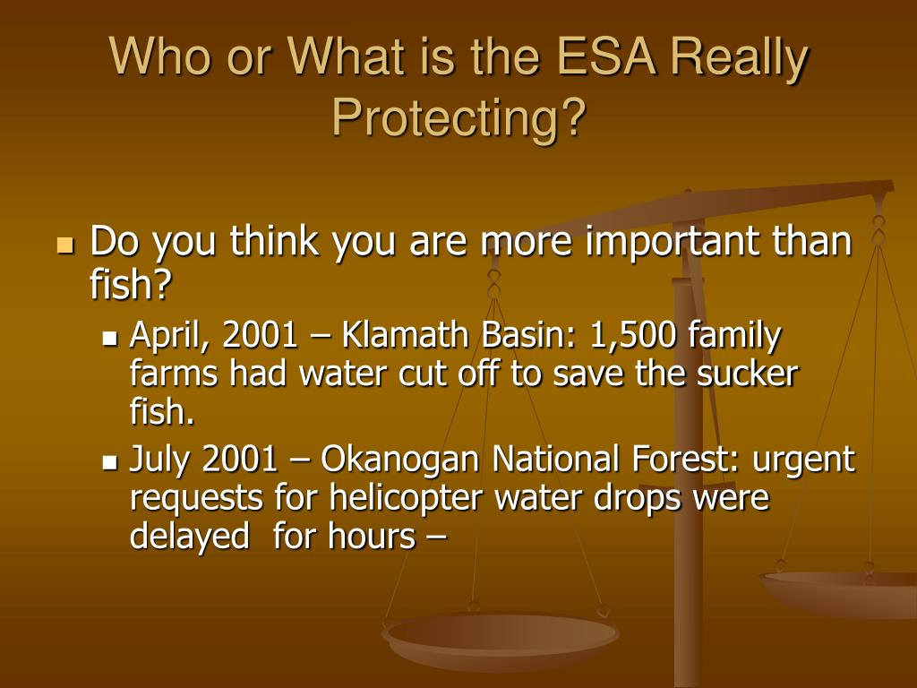 Who or What is the ESA Really Protecting?