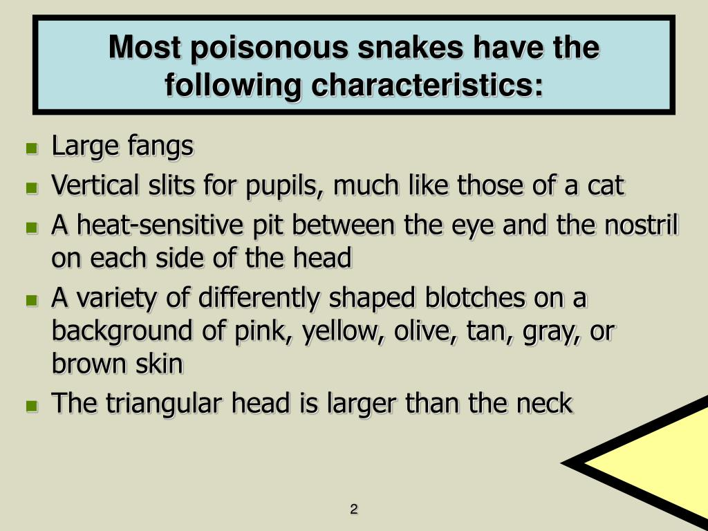 Most poisonous snakes have the following characteristics: