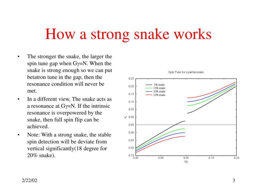 How a strong snake works