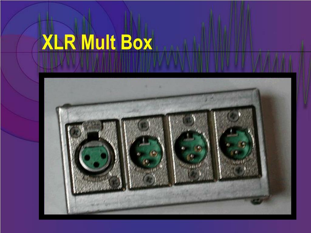 XLR Mult Box