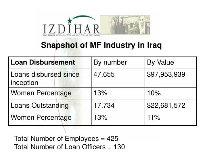 Snapshot of MF Industry in Iraq
