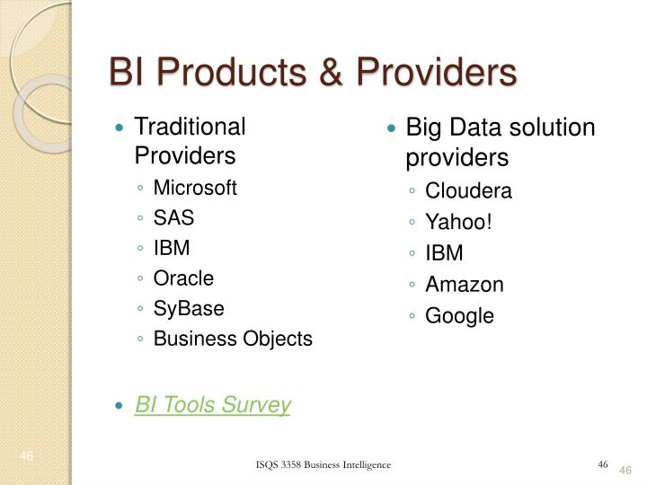 BI Products & Providers