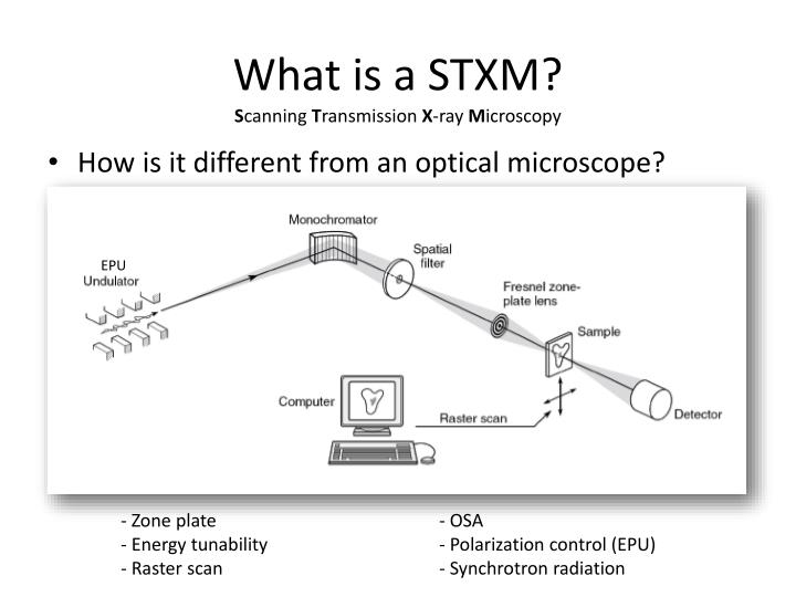 What is a STXM?