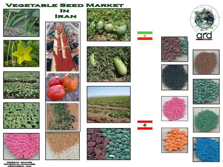 Vegetable Seed Market