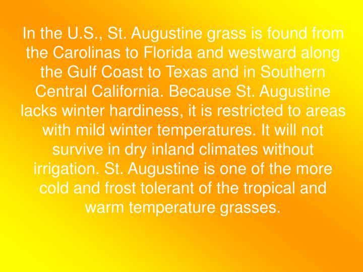In the U.S., St. Augustine grass is found from the Carolinas to Florida and westward along the Gulf Coast to Texas and in Southern Central California. Because St. Augustine lacks winter hardiness, it is restricted to areas with mild winter temperatures. It will not survive in dry inland climates without irrigation. St. Augustine is one of the more cold and frost tolerant of the tropical and warm temperature grasses.