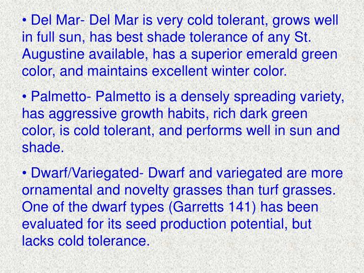 Del Mar- Del Mar is very cold tolerant, grows well in full sun, has best shade tolerance of any St. Augustine available, has a superior emerald green color, and maintains excellent winter color.