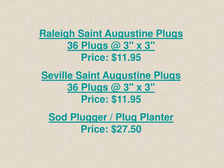 Raleigh Saint Augustine Plugs