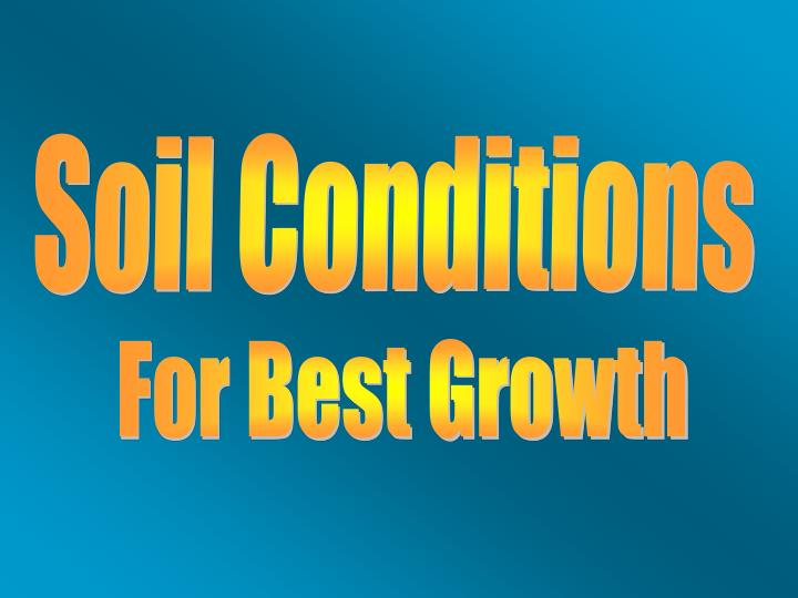 Soil Conditions