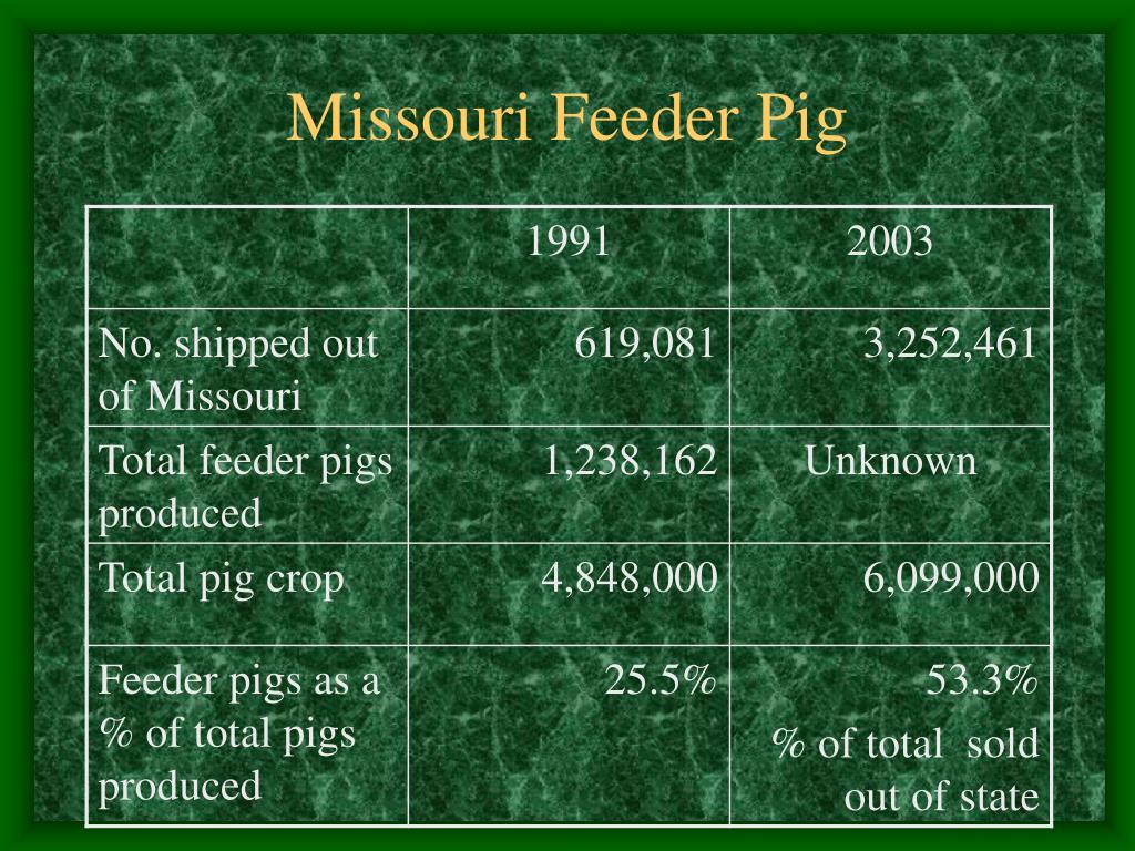 Missouri Feeder Pig