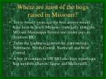 where are most of the hogs raised in missouri