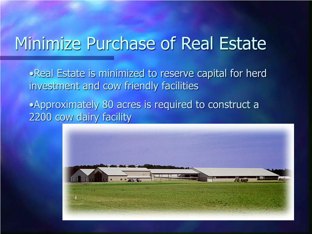 Minimize Purchase of Real Estate