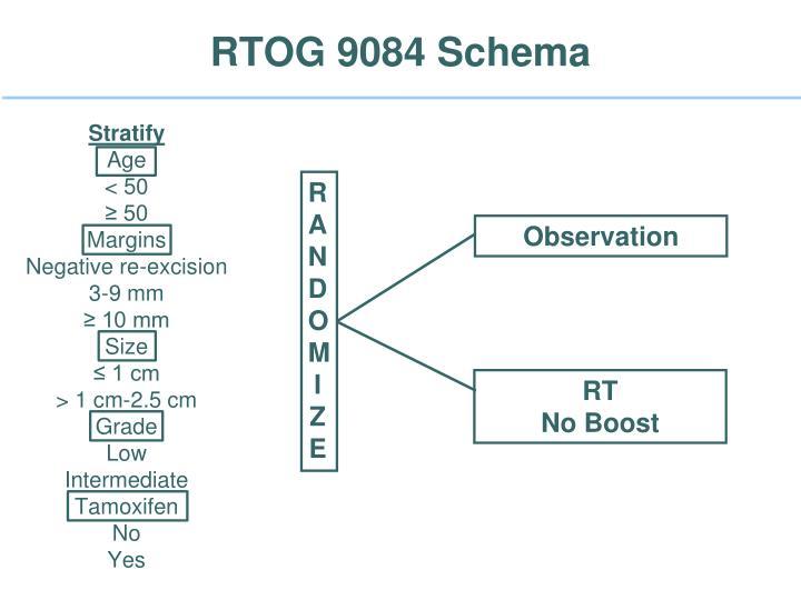 RTOG 9084 Schema