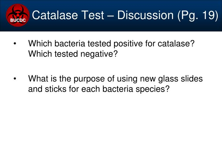 Catalase Test – Discussion (Pg. 19)