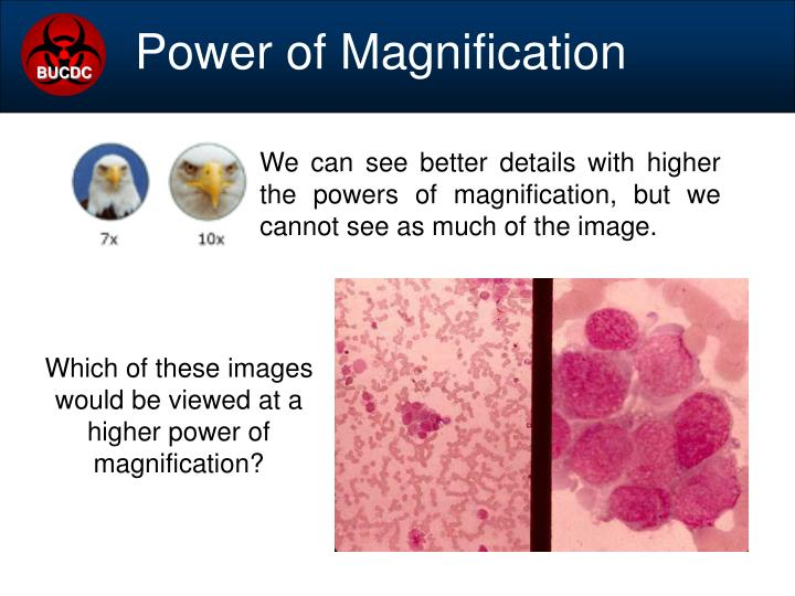 We can see better details with higher the powers of magnification, but we cannot see as much of the image.