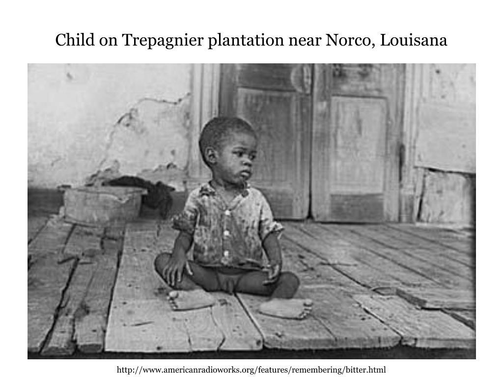 Child on Trepagnier plantation near Norco, Louisana