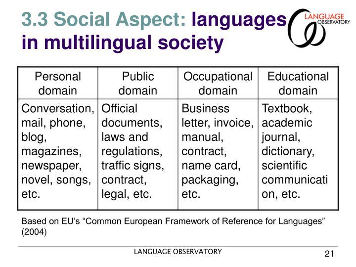 3.3 Social Aspect: