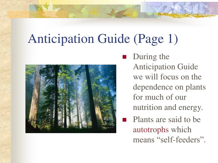Anticipation Guide (Page 1)