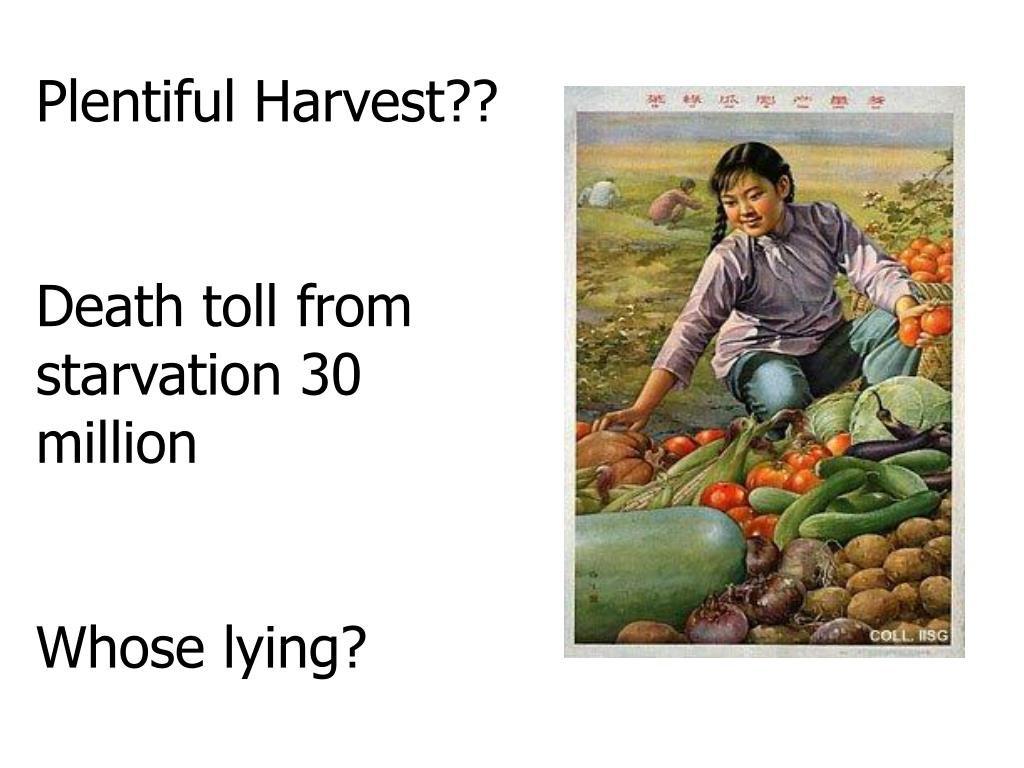 Plentiful Harvest??