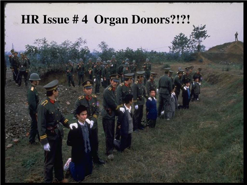 HR Issue # 4  Organ Donors?!?!