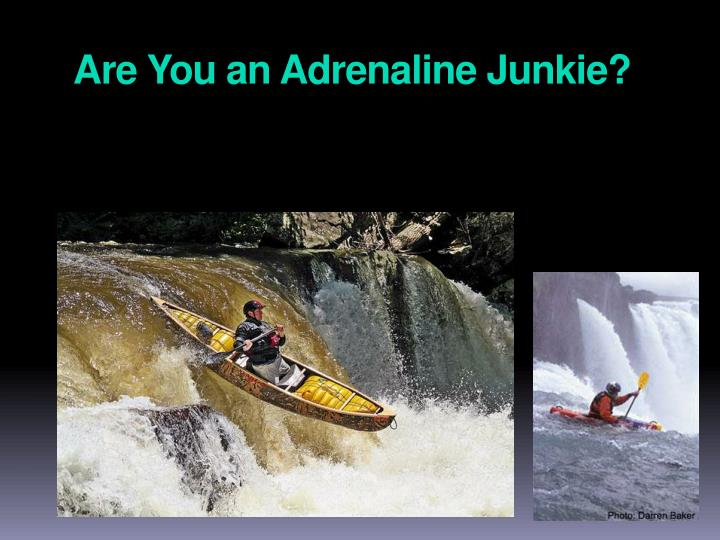 Are You an Adrenaline Junkie?
