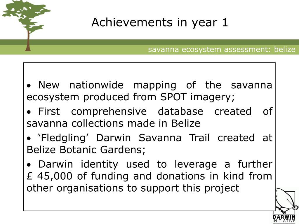 Achievements in year 1