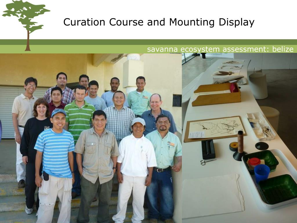 Curation Course and Mounting Display