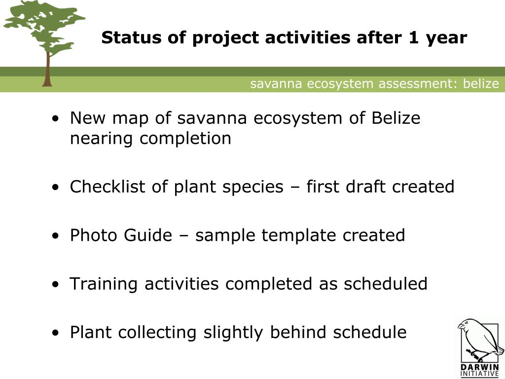 Status of project activities after 1 year
