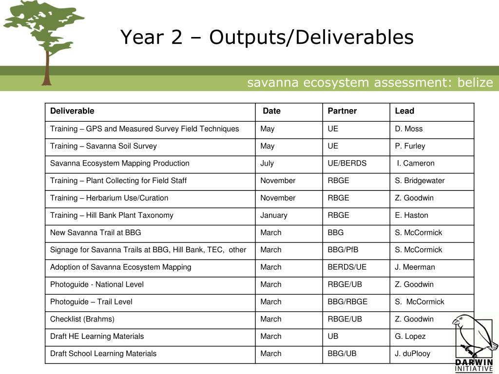Year 2 – Outputs/Deliverables