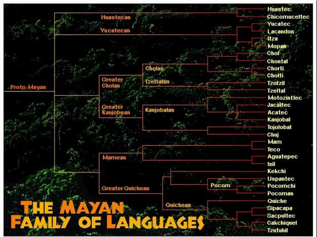Today the indigenous Maya live in areas of Guatemala, Mexico and Belize. They speak 31 Maya languages that evolved from the Classic times.