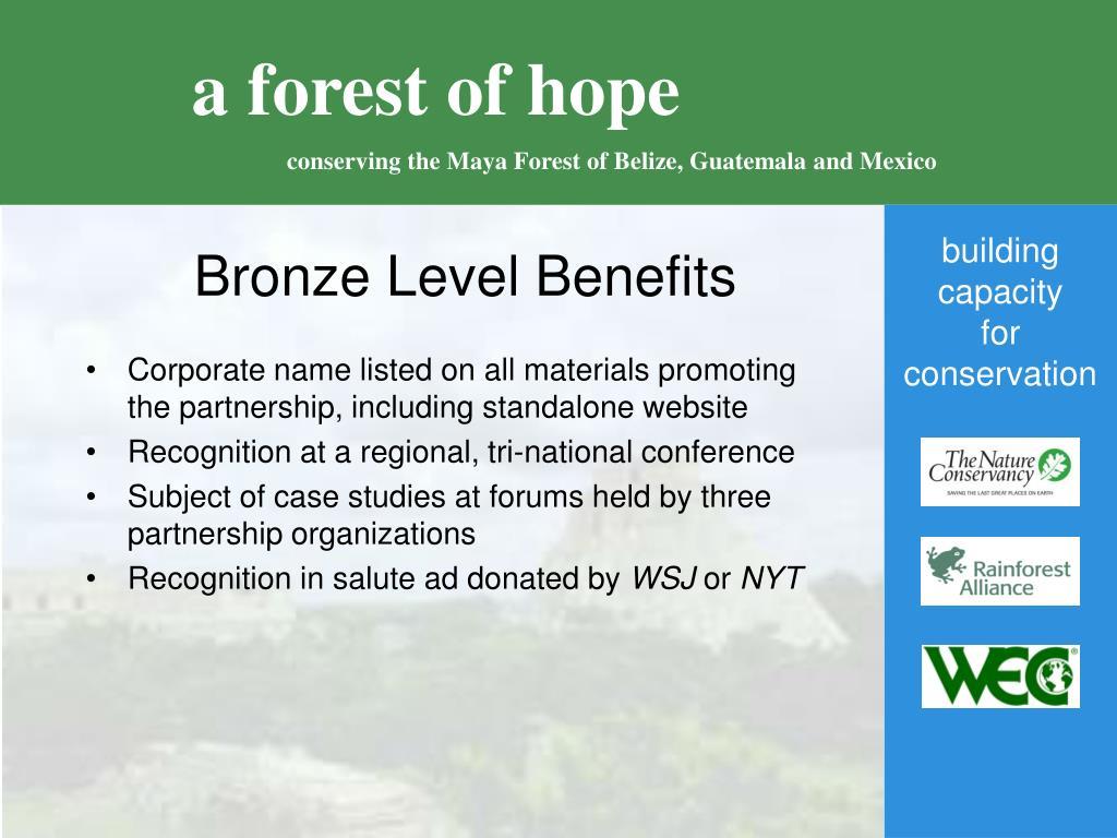 Bronze Level Benefits