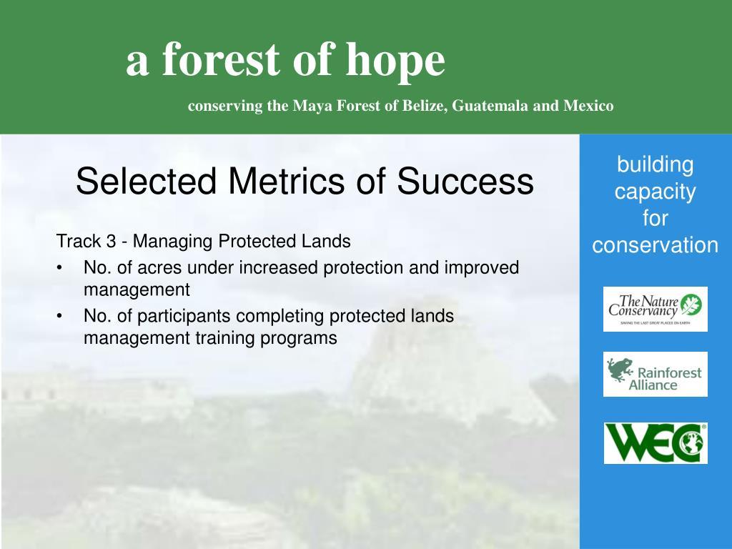 Selected Metrics of Success