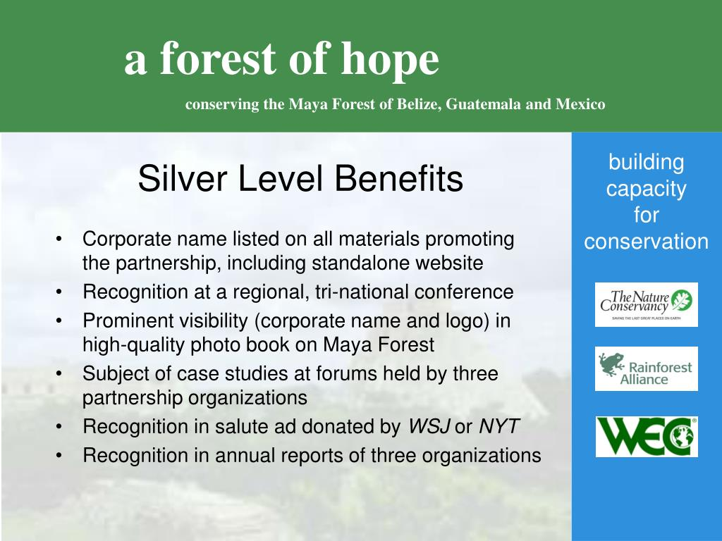 Silver Level Benefits