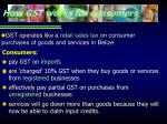 how gst works for consumers
