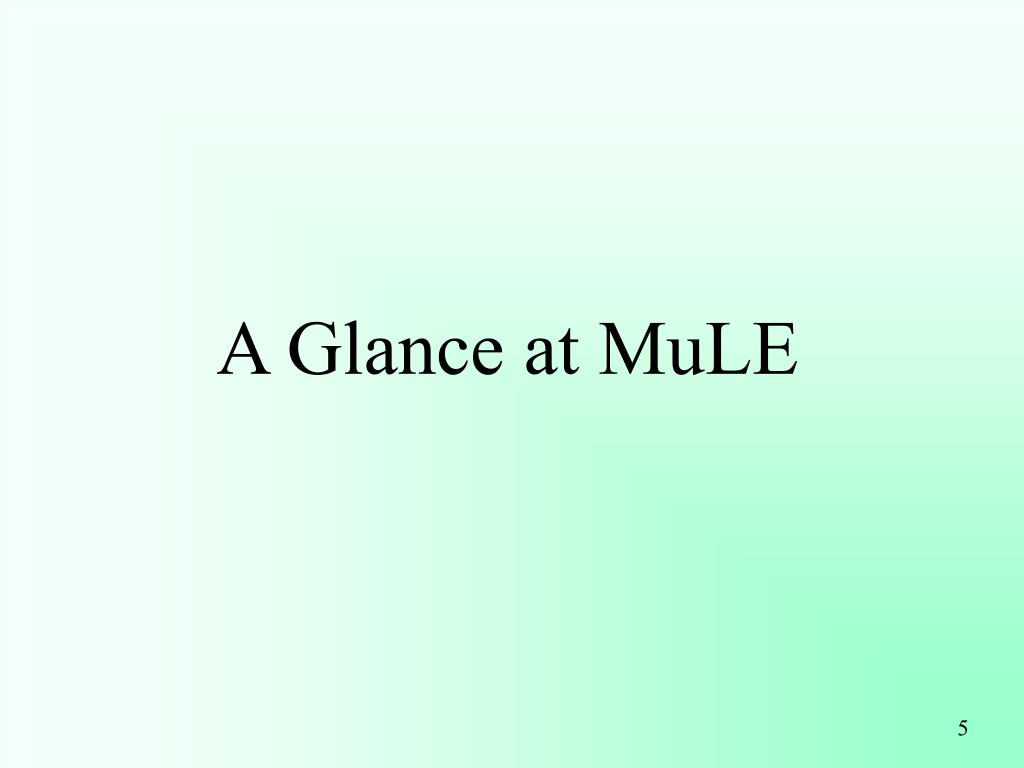 A Glance at MuLE