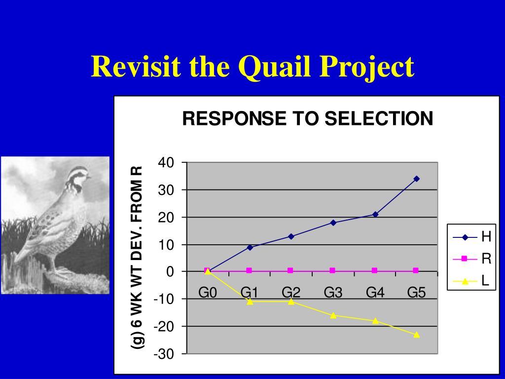 Revisit the Quail Project