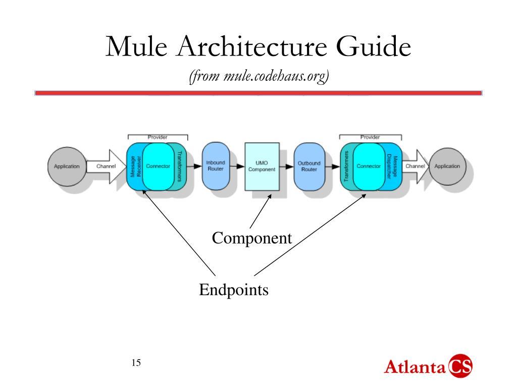 Mule Architecture Guide
