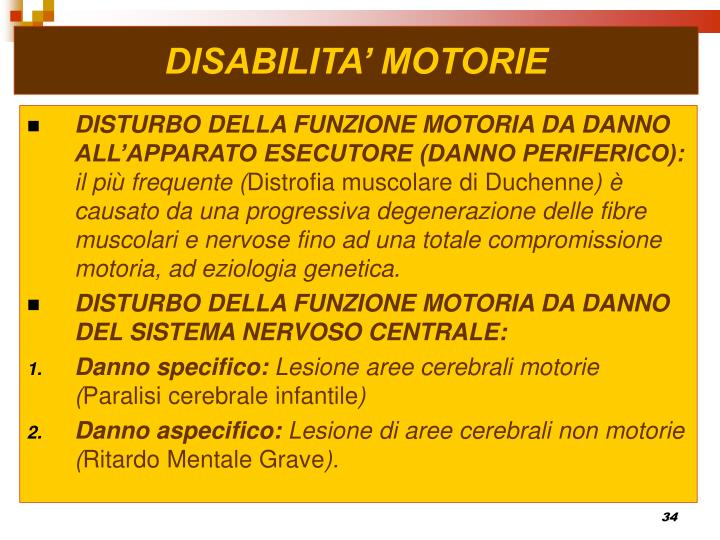DISABILITA' MOTORIE