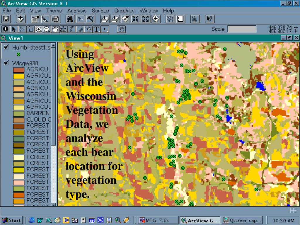 Using ArcView and the Wisconsin Vegetation Data, we analyze each bear location for vegetation type.