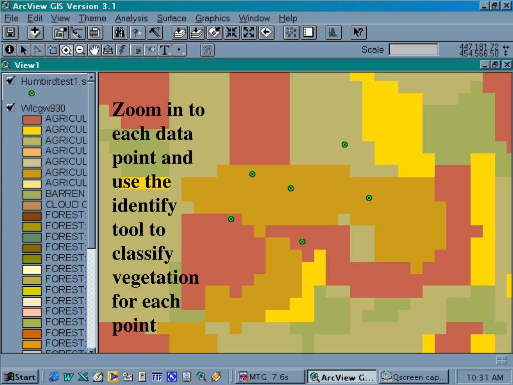 Zoom in to each data point and use the identify tool to classify vegetation for each point