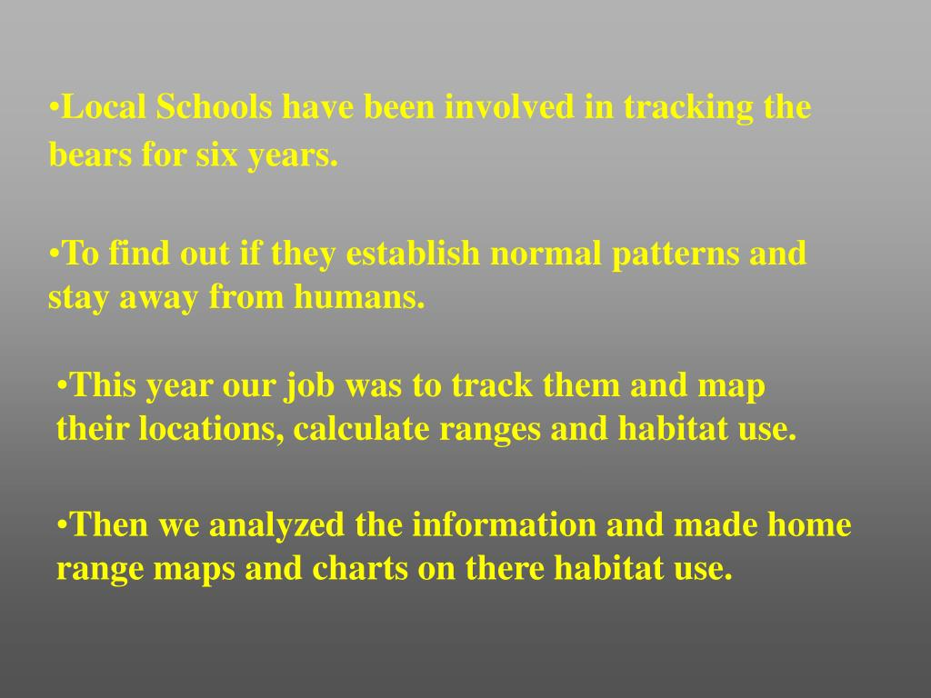 Local Schools have been involved in tracking the bears for six years.