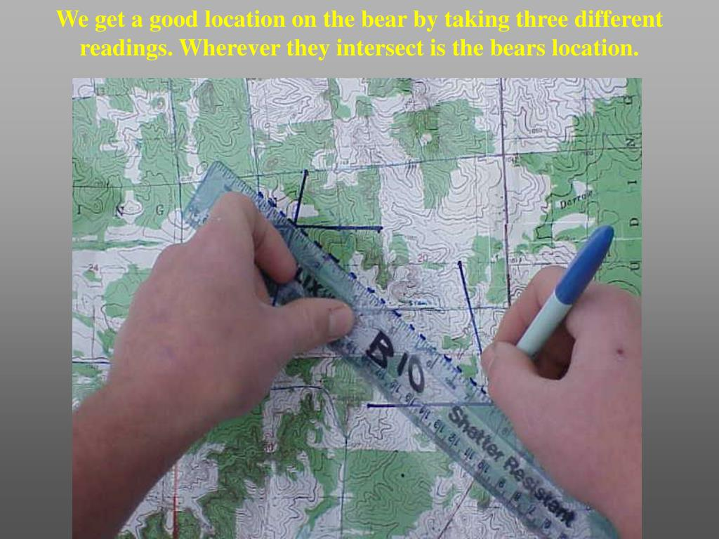 We get a good location on the bear by taking three different readings. Wherever they intersect is the bears location.