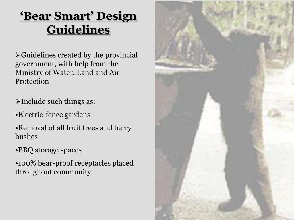 'Bear Smart' Design Guidelines