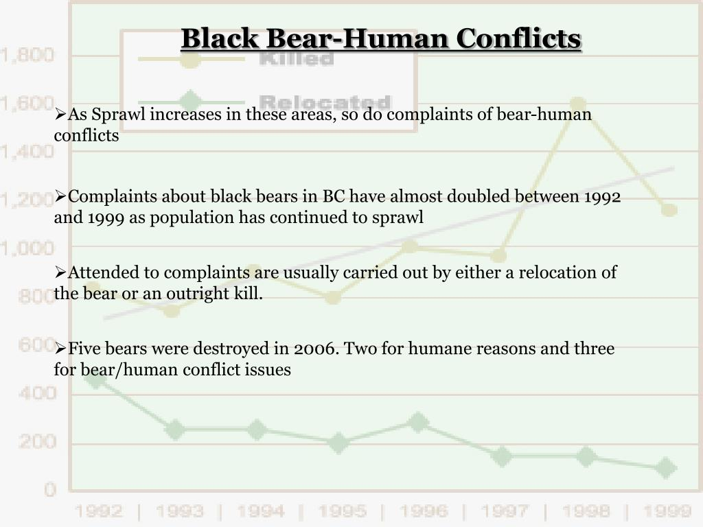 Black Bear-Human Conflicts