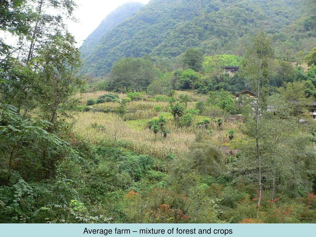 Average farm – mixture of forest and crops