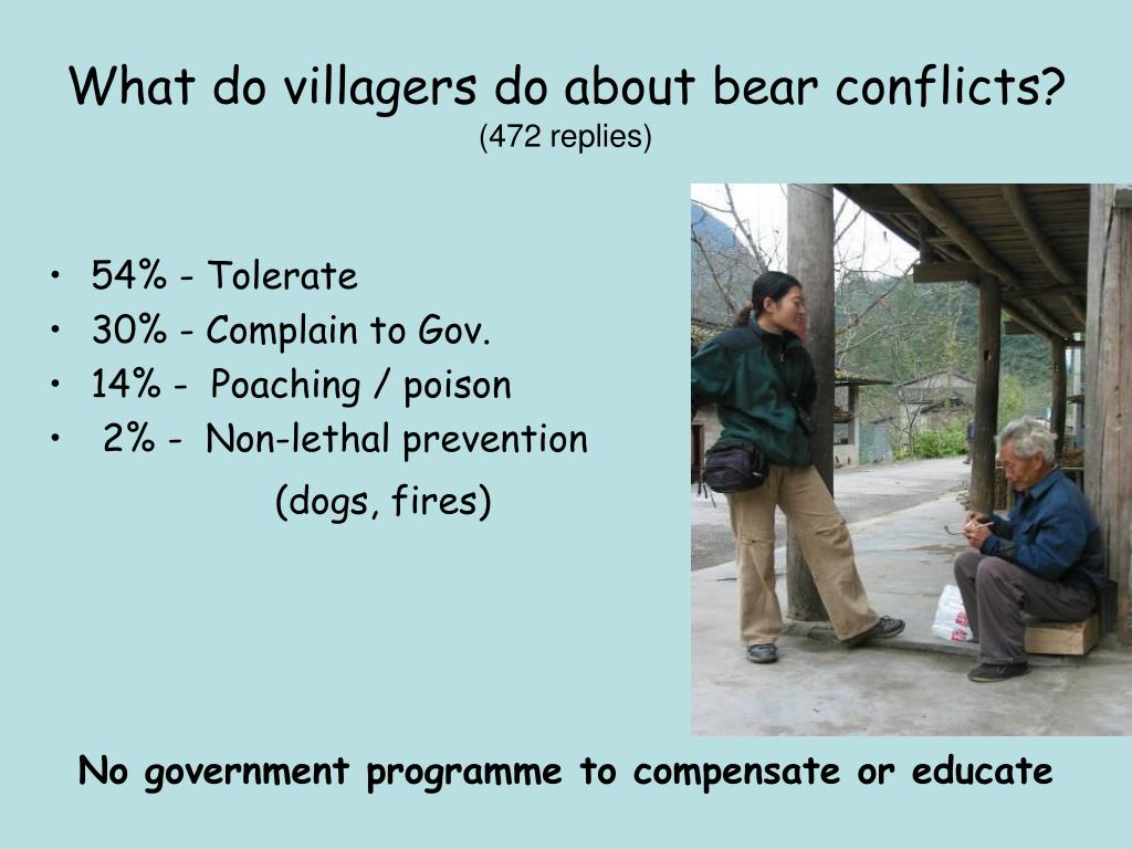 What do villagers do about bear conflicts?
